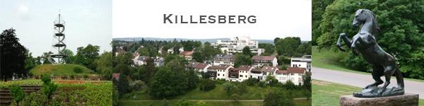 Immobilienmakler für exklusive Wohnimmobilien in Stuttgart Killesberg.